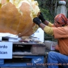 Kürbisschnitzer im Blühenden Barock- 21.Oktober 2012
