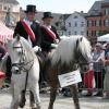 pferdemarkt_ludwigsburg_2012_-25