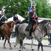 Pferdemarkt Ludwigsburg 2010